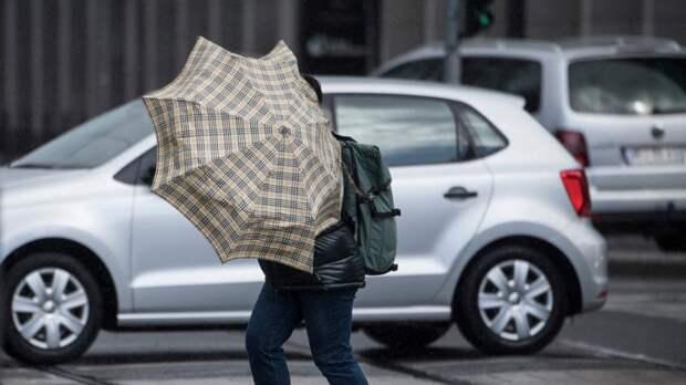 В Ленинградской области объявили штормовое предупреждение