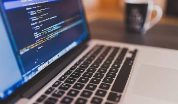 Совфед назвал лидеров винтернет-пиратстве