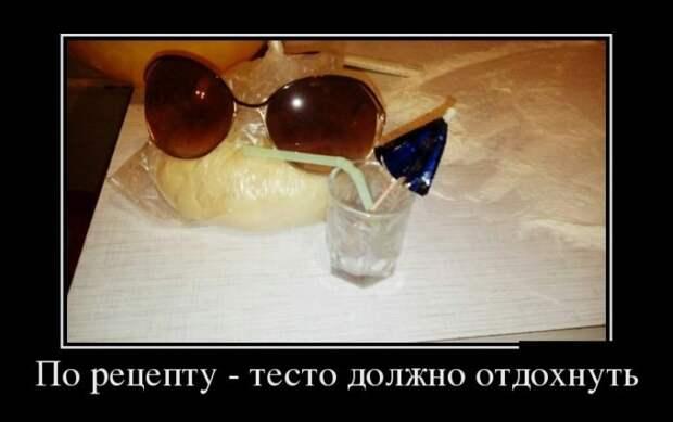 1452591276_demki-4