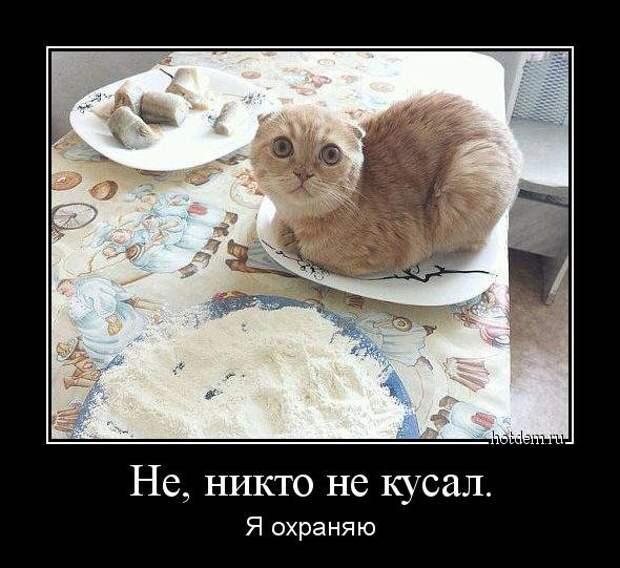 1408690509_demotivatory-prikoly-6