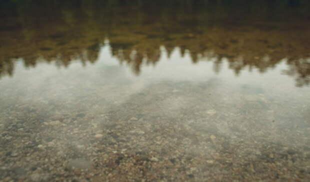 Впал вкому: мужчина решил поплавать ичуть неутонул вИсети вЕкатеринбурге