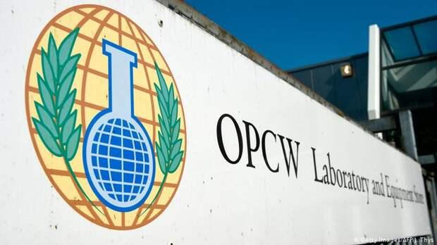 Россия обвинила   гендиректора ОЗХО в махинациях и подлогах