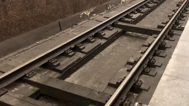Человек на пути «затормозил» движение на серой ветке московского метро