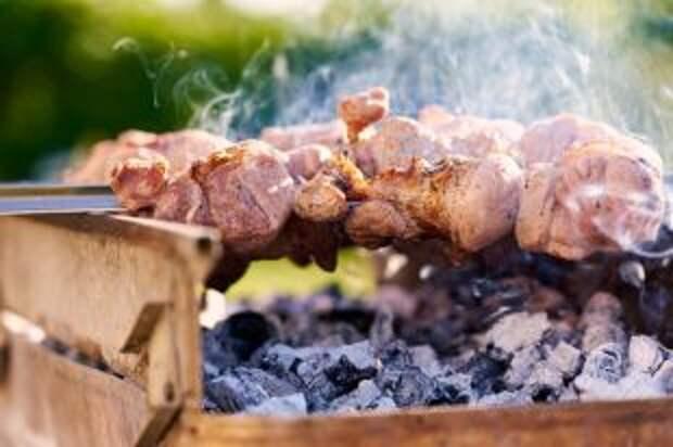 Уголь из какой древесины лучше подходит для шашлыка?