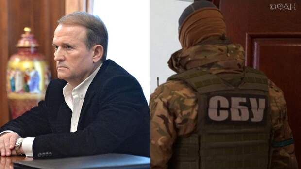 Экс-депутат Рады Олейник назвал истинную причину гонений на Медведчука