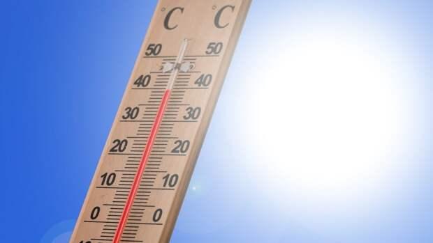 Жителей Ленинградской области предупредили о возвращении жары