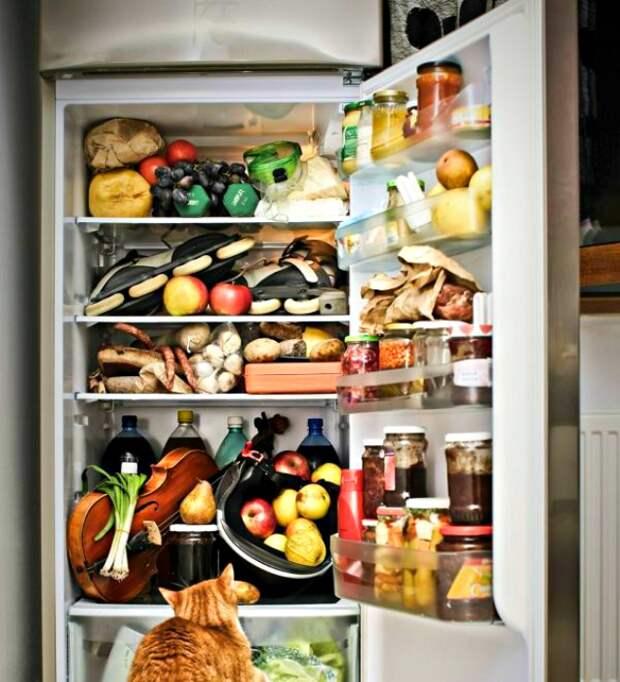 Долой старую еду из холодильника.