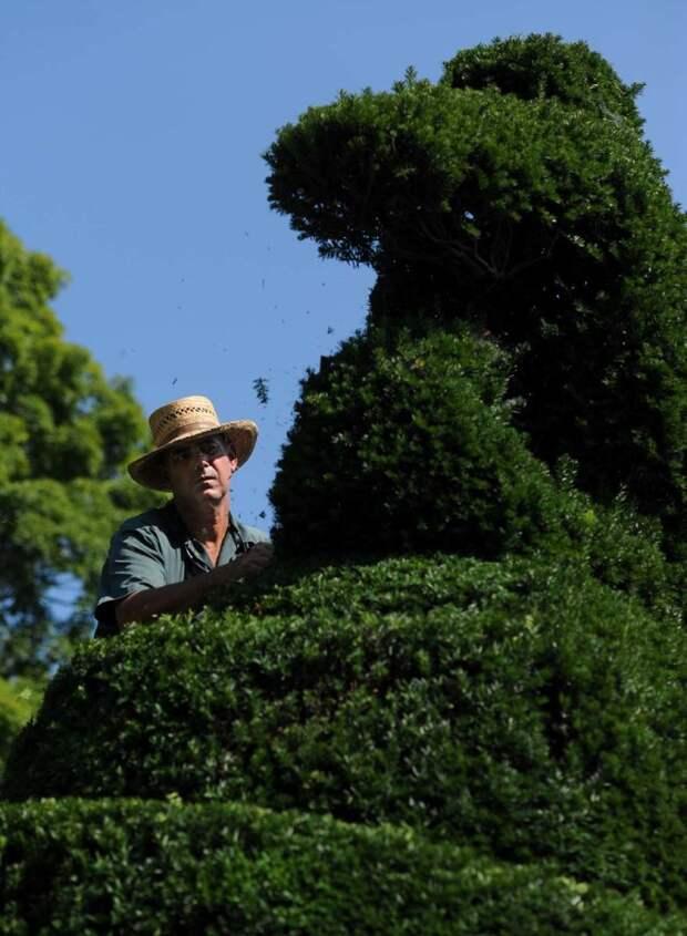 Ladew Topiary Gardens-2013-08-14 (8)