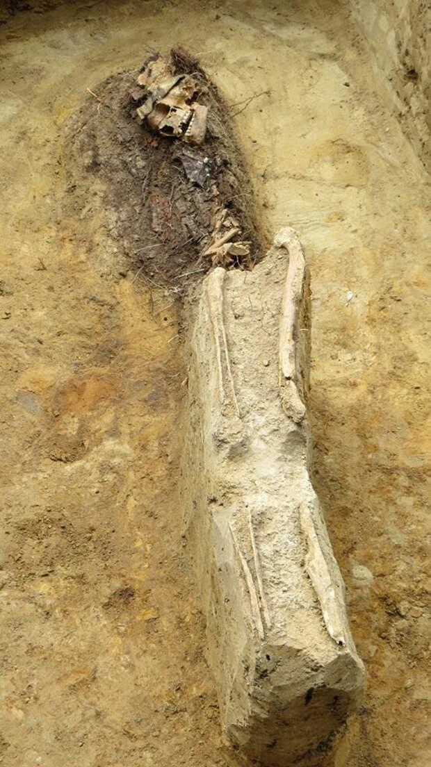 Княжна и шесть заморских богатырей: итоги раскопок древнерусского могильника во Владимире