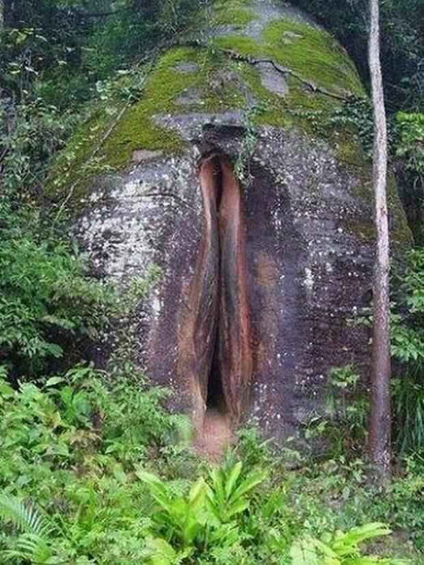 Природа нас поражает
