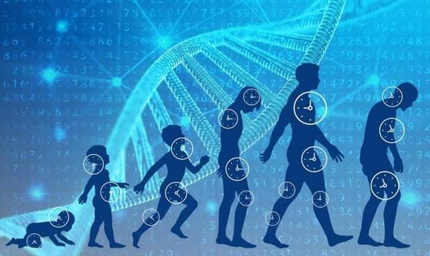 9 шагов к долголетию, которые доказаны наукой