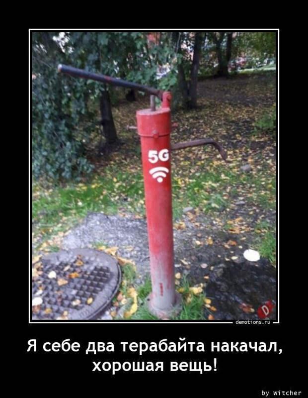 5402287_1613462474_demy9 (536x692, 99Kb)