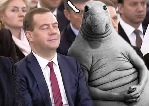 Ю. Ткачев, К. Кеворкян, К. Одессит о статье Д. Медведева