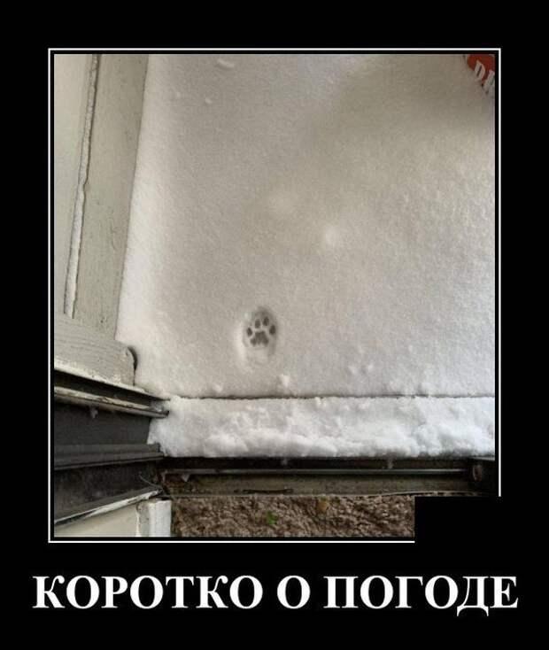 Демотиватор про погоду