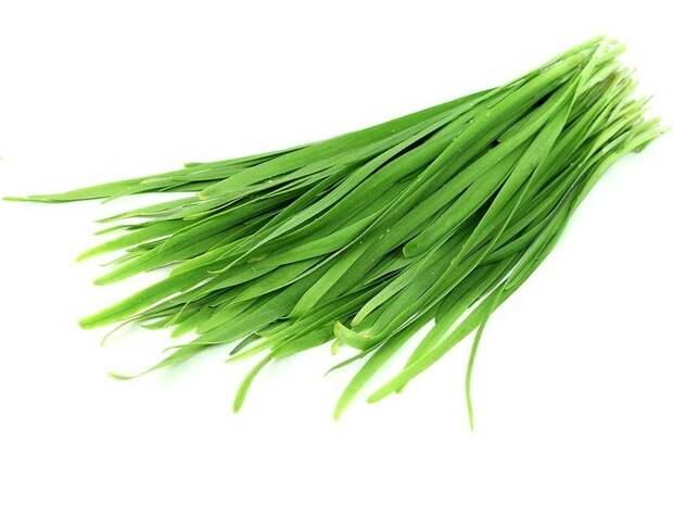 пряная зелень лука-слизуна