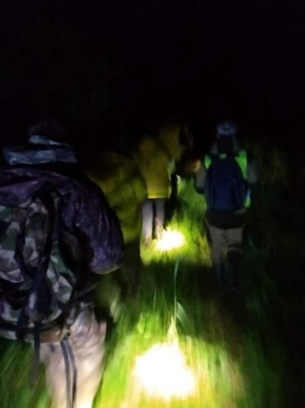 Поисковики ночью вывели из леса 78-летнего дедушку