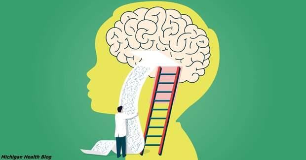 Мозг мужчин формируется полностью только к 40 годам! Вот почему