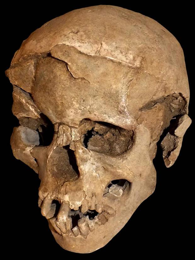 Составлен список крупнейших археологических открытий 2016 года