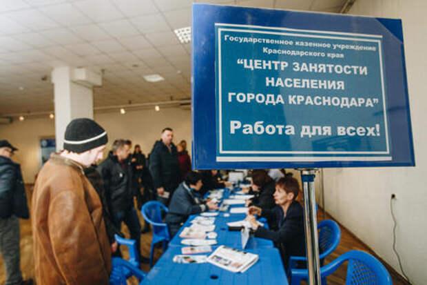 В Краснодаре Центр занятости не предоставлял горожанам работу
