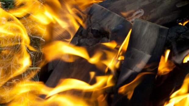 Праздник с огоньком: пьяные дачники едва не сожгли поселок в Кургане