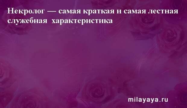Картинки со статусами. Подборка milayaya-status-milayaya-status-30231112102020-17 картинка milayaya-status-30231112102020-17