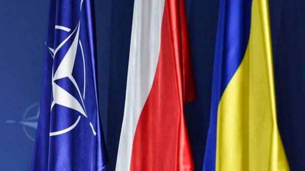 Бывший депутат Украины Заружко: Киеву нечего предложить НАТО за вступление
