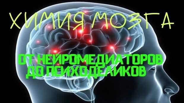 Химия мозга: от нейромедиаторов до психоделиков. Дубынин Вячеслав