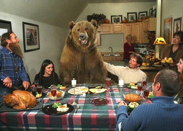 Парень нашел двух медвежат возле умершей матери...