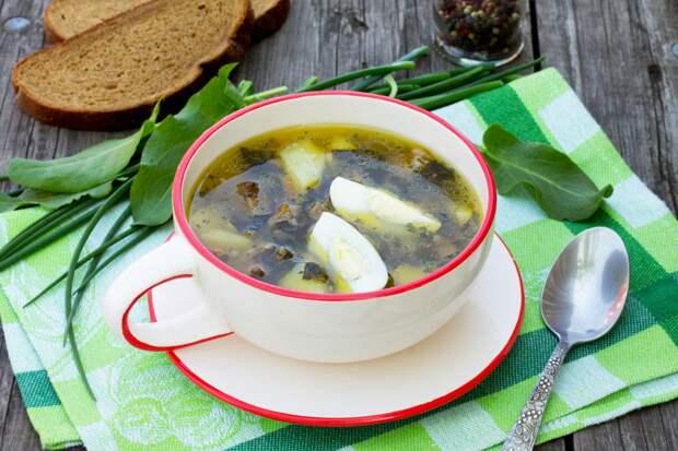Салат, суп и пирог: готовим вкусные сезонные блюда со щавелем
