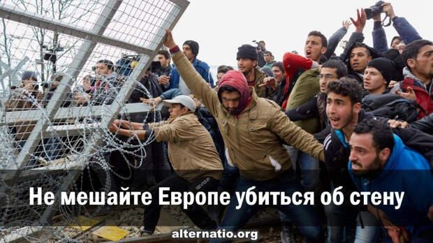Не мешайте Европе убиться об стену