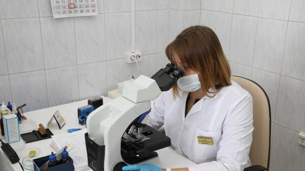Треть генома коронавируса поменялась в выявленных в России мутациях