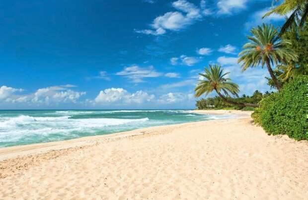 Разъехались с супругой по командировкам, встретились на одном пляже