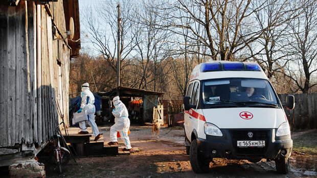 ВРоссии засутки выявили 8 115 новых случаев коронавируса