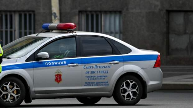 Полиция ищет мужчину, избившего школьницу в Петроградском районе Петербурга