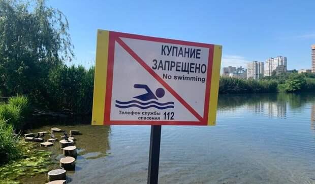 Купаться в неположенных местах могут полностью запретить в Ростовской области