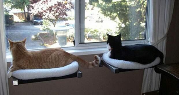 Мебель для котов (подборка)