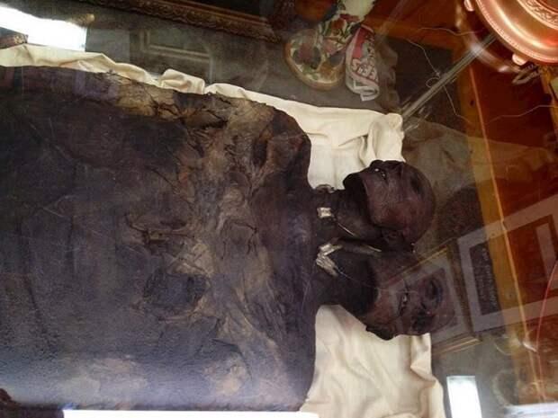 Загадочный двухголовый гигант из Патагонии