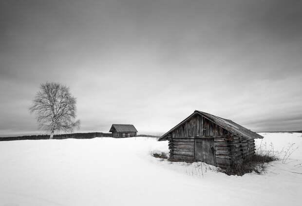 Здесь ощущаются просторы Русского Севера и его одиночество.