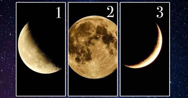Волшебная Луна подскажет, что нужно сделать, чтобы осуществилось желание