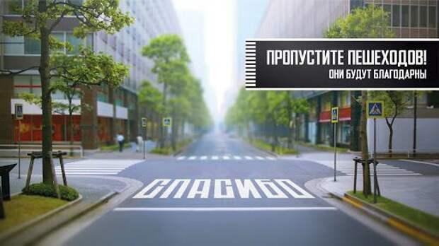 Госавтоинспекция г. Симферополя проводит профилактическое мероприятие «Пешеход! Пешеходный переход!»