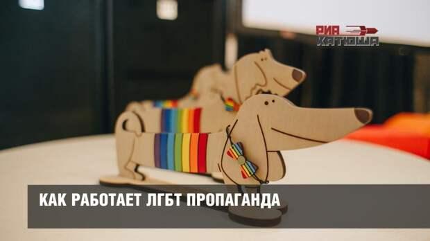 Как работает ЛГБТ пропаганда