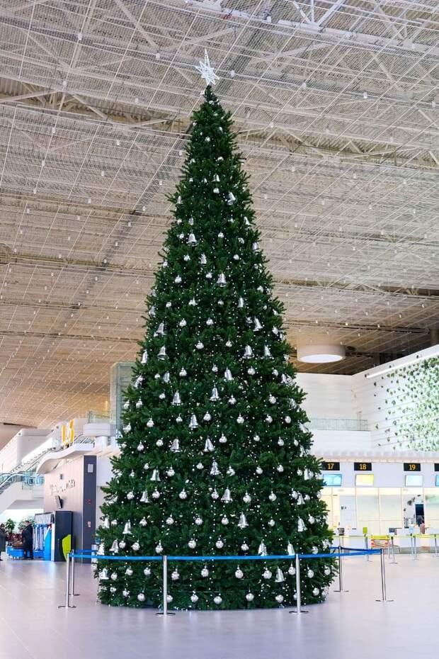 В аэропорту «Симферополь» новогоднюю ёлку установили альпинисты
