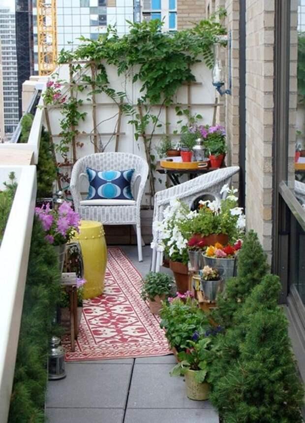 Красивое оформление балкончика с большим количеством комнатных цветов, что вдохновит.