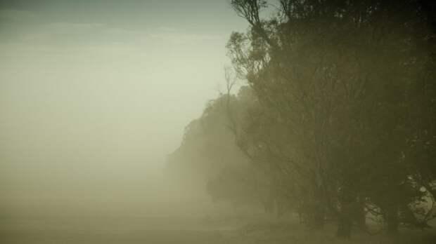 Ставрополь накрыла пыльная буря (ВИДЕО)