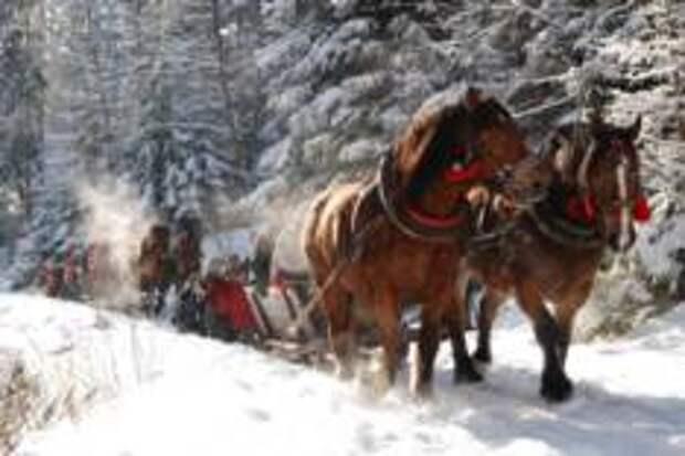 Где в Польше провести новогодние каникулы