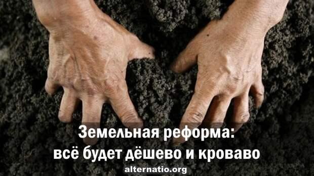Александр Роджерс. Земельная реформа: всё будет дешево и кроваво