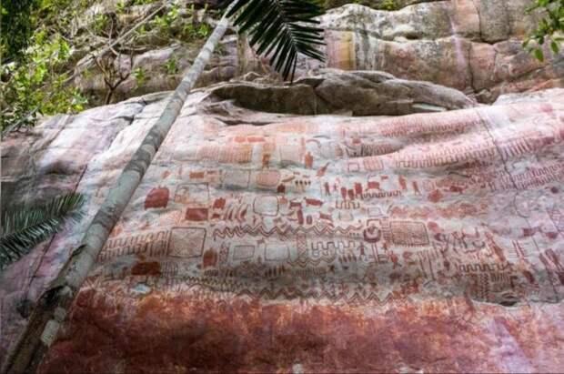 В тропических лесах Амазонки обнаружено раскинувшееся на 8 миль «полотно» зверей ледникового периода