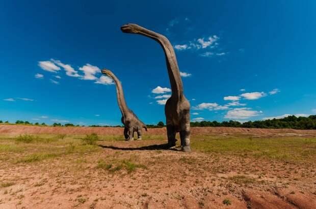 Scientific Reports: ученые выяснили, что ранние динозавры могли объединяться в стада