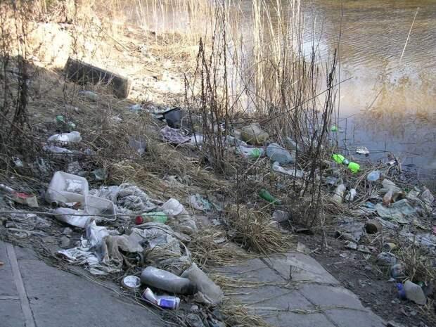 Суд обязал мусорщиков ликвидировать свалку на речке Красненькой в Петербурге