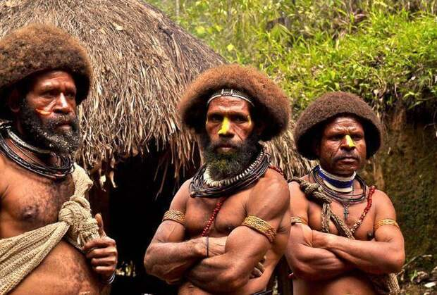 Хитрые папуасы